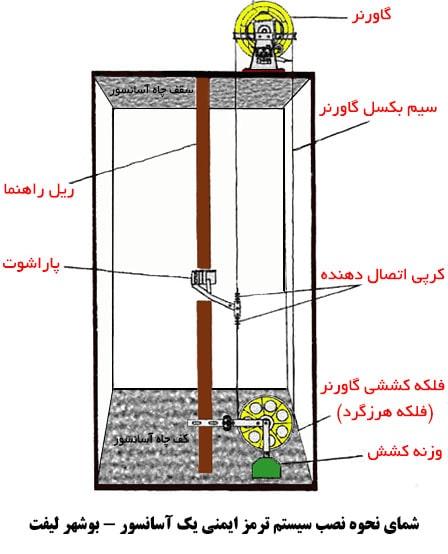 مکانیزم عملکرد سیستم ایمنی پاراشوت